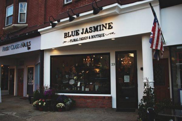 Blue Jasmine Westfield NJ
