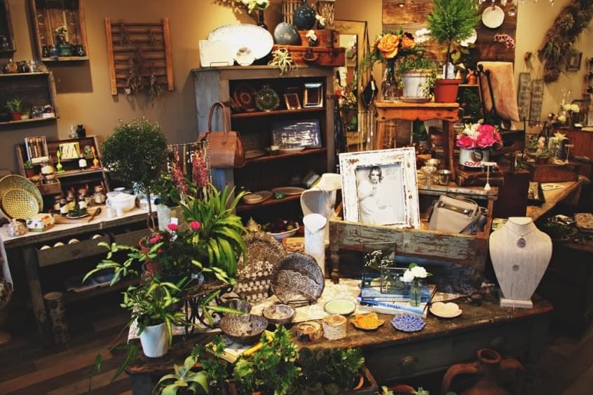 Blue Jasmine – See-Inside Florist, Westfield, NJ