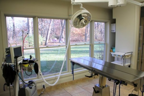 HousePaws Mobile Veterinary Service Mt Laurel NJ operating table