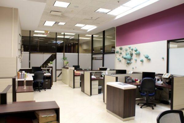 Lcda Velma E. Diaz Carrasquillo Abogada Notario, CSP Hato Rey, Puerto Rico law office