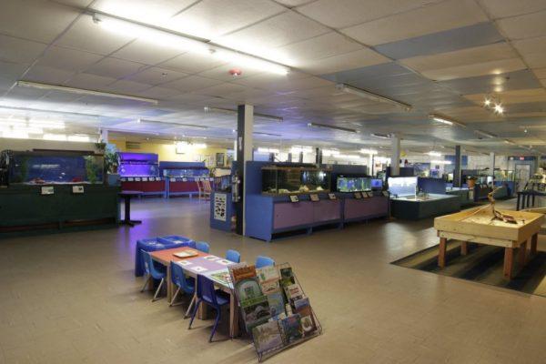 Biomes Marine Biology Center North Kingstown RI Aquarium