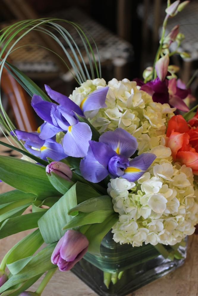 Jacqueline's Flowers & Gifts – See-Inside Florist, Cherry Hill, NJ