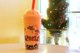 Hokkaido Bubble Tea House New Brunswick NJ