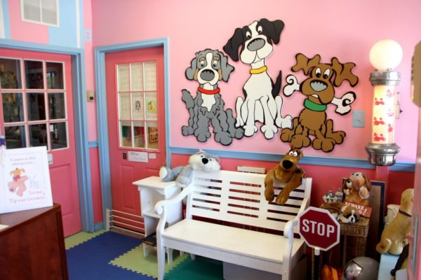 Jack & Emily's Pet Salon Voorhees Township NJ waiting room white bench