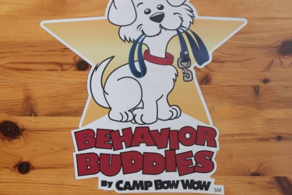 Camp Bow Wow Pet Grooming Cherry Hill NJ logo