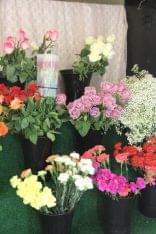Cavello Floral Co Mt Laurel NJ flowers