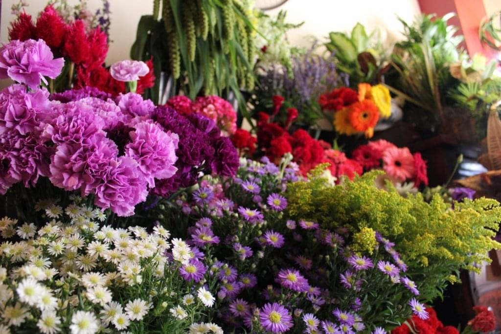 Haddonfield Floral Company – See-Inside Florist, Haddonfield, NJ