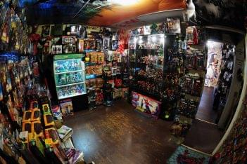 It's A Toy Store Richland NJ action figures comic book figurines