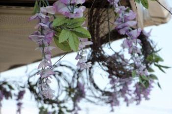 Mc Ginleys Garden Center Lumberton NJ florist hanging purple flowers trim