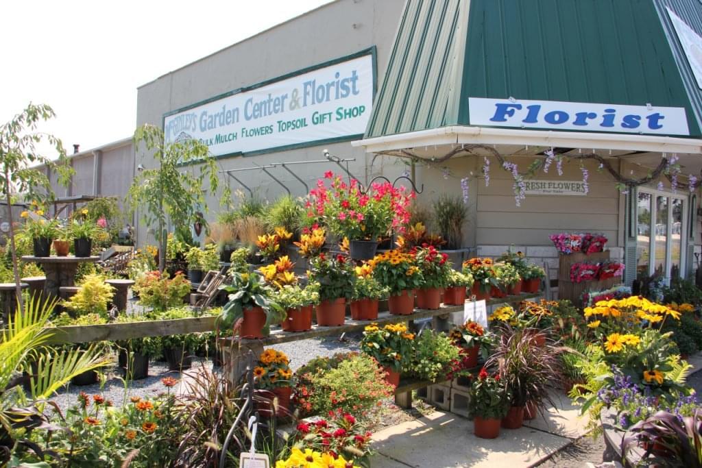 Mc Ginleys Garden Center – See-Inside Florist, Lumberton, NJ