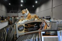 Burlington Carpet One, Marlton NJ tiger