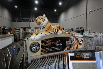 Burlington Carpet One, Marlton NJ tiger
