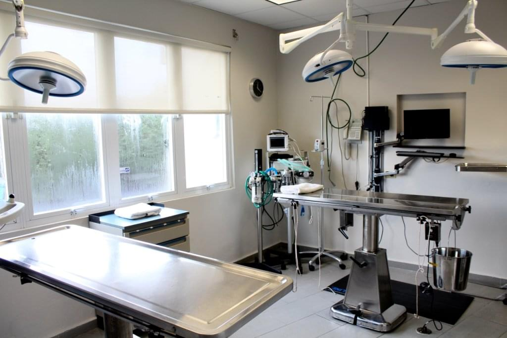 Centro Medico Veterinario, Guaynabo Puerto Rico – See-Inside Veterinary