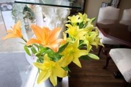 Asters Floral Shop Collingswood NJ Flowers orange yellow lilies