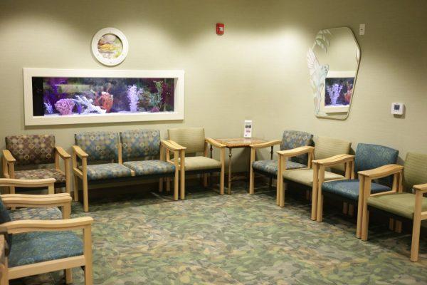 Dr. Carlyn Phucas Orthodontist Marlton NJ aquarium waiting room