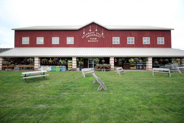 The Market at DelVal Doylestown, PA Farmers Market