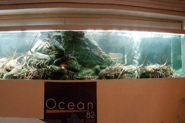 Ocean 82 restaurant in Grand-Case, Saint Martin lobster aquarium