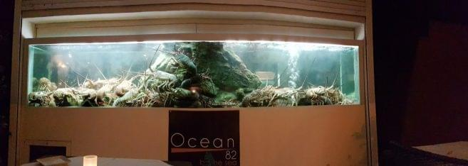 Ocean 82 restaurant in Grand-Case, Saint Martin lobster aquarium