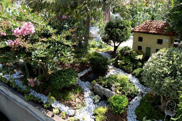 Greenstreet Gardens of Virginia Alexandria, VA Garden Center fairy garden