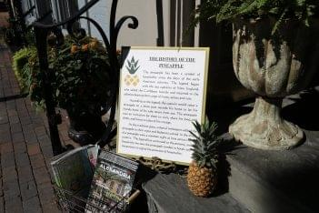 The Old Town Shop Alexandria, VA pineapple