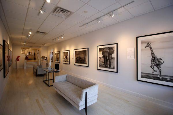 Isabella Garrucho Fine Art Greenwich, CT Art Gallery