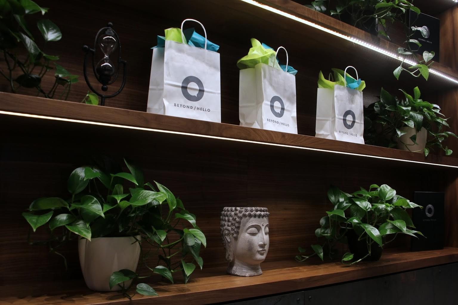 BEYOND HELLO Cannabis store in Bristol, PA plants wall gift bags buddha head