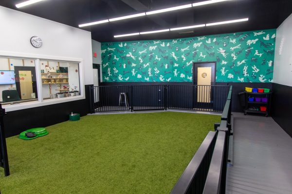 dog care room at Heart + Paw Dog care and Veterinary in Cherry Hill, NJ