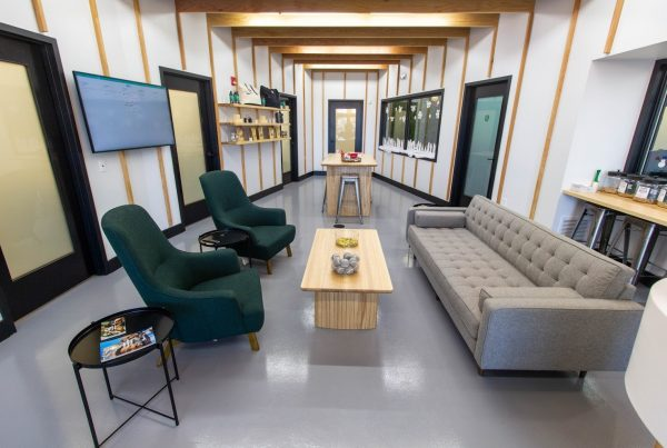 interior of Heart + Paw Dog care and Veterinary in Cherry Hill, NJ