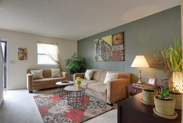 model living room at Cross Creek Cove Apartments in Fayetteville, NC