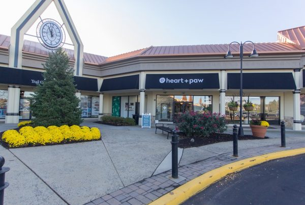 store front of Heart + Paw Dog care and Veterinary in Glen Mills, PA
