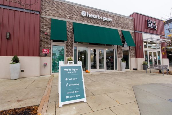 Heart + Paw dog care and Veterinary in King of Prussia, PA