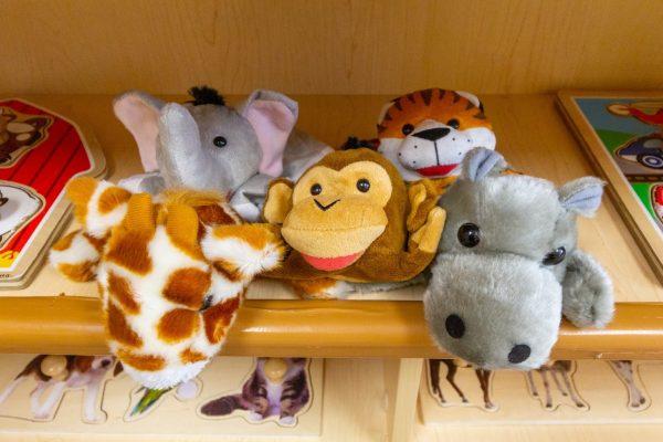 animal dolls in Lightbridge Academy Day Care in Shrewsbury, NJ